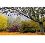 Autumn Landscape  Nature Wallpaper Hd Desktop