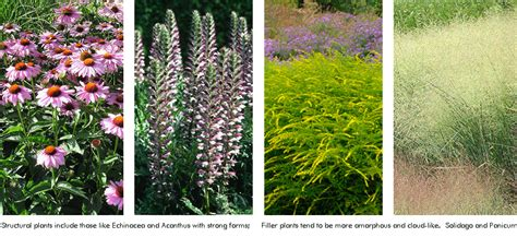 grounded design by thomas rainer beyond the border part 3 how to select plants for landscape