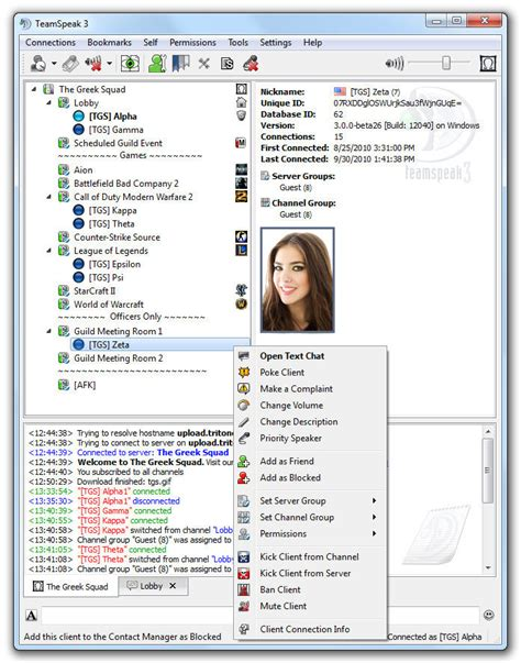best teamspeak 3 server hosting teamspeak 3 servers best voice ip chat client out