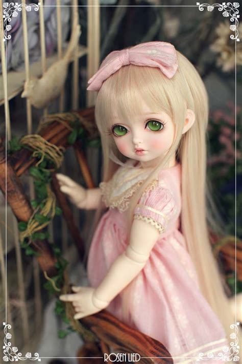 jointed doll jointed rosenlied doll bjd sd msd 1 4 joint doll resin