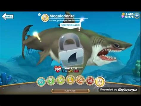 aptoide hungry shark world mod hungry shark world mod gemas y dinero infinito youtube