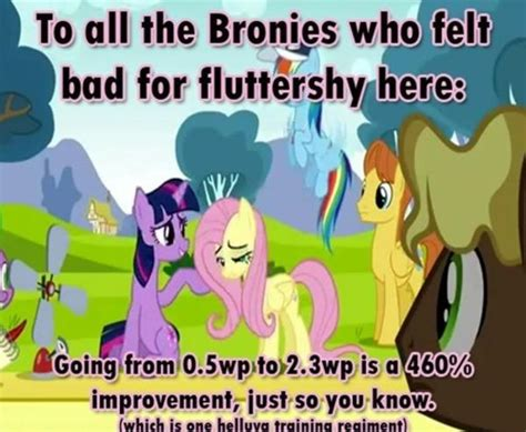 Know Your Meme My Little Pony - fluttershy my little pony friendship is magic know your meme