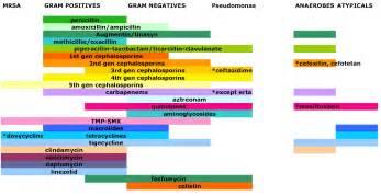 Spectrum coverage of antibiotics as a chart medicalschool
