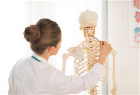 Anatomie Humaine De Femme Images Stock Image 18956184