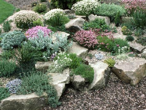 Rock Gardens Pinterest Best 25 Rock Garden Plants Ideas On Pinterest Rock Plants Plants For Rock Garden And Rocks