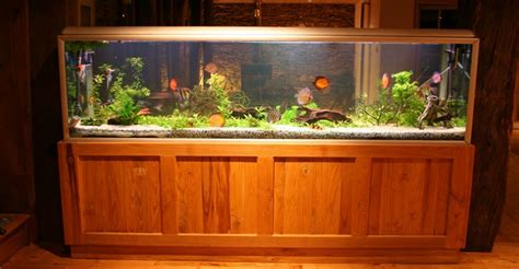 55 Gallon Stand 4 best 55 gallon fish tank stands you can buy right now