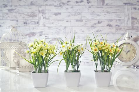 artificial crocus flowers plants in pot home decor artificial daffodil flowers plants in pot grass home decor garden white yellow ebay