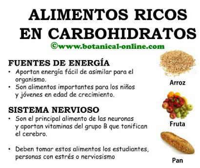 alimentos hidratos de carbono lista hidratos de carbono