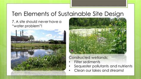 top ten elements of sustainable landscape design