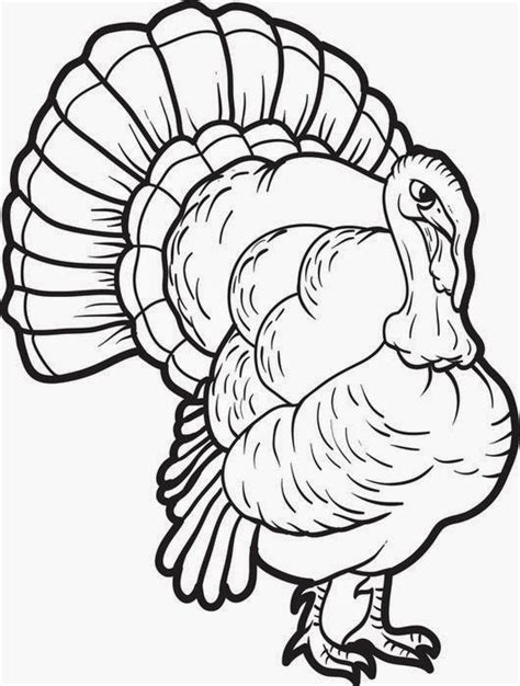 turkey color page coloring pages turkey coloring pages free and printable