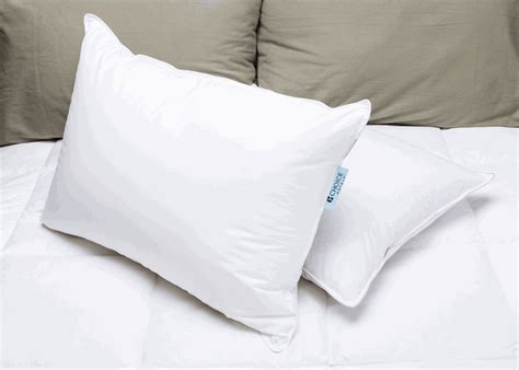 Comfort Suites Pillows by Pillows
