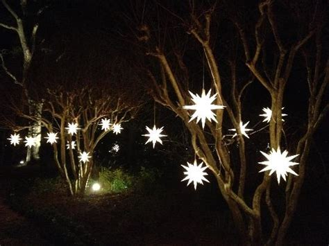 lights on trees lights on trees in the garden picture of elizabethan