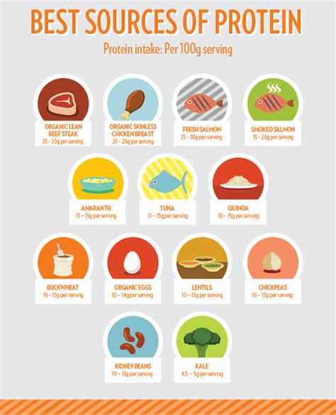best high protein food top 30 foods that build musclehack