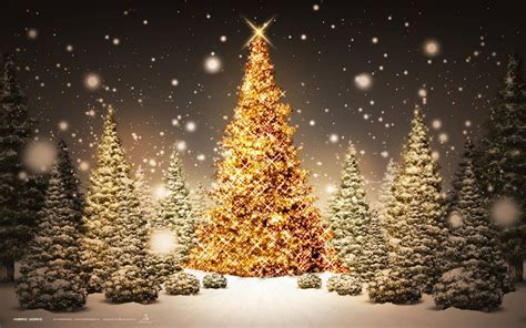beautiful christmas trees photo trick beautiful christmas hd wallpapers