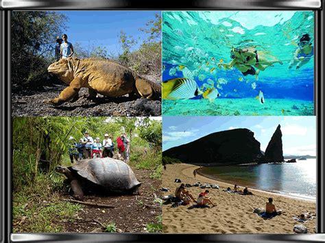 ecuador tur 205 stico islas galpagos flora y fauna ecuador flora y fauna