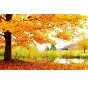 Wallpapers Autumn Scenery Desktop