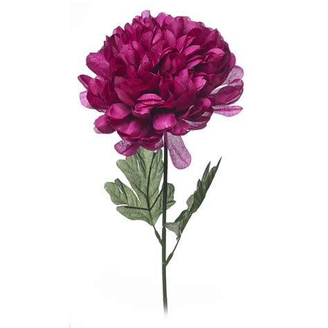 Single Flower Vase by Single Flower Vase Shop For Cheap Products And Save