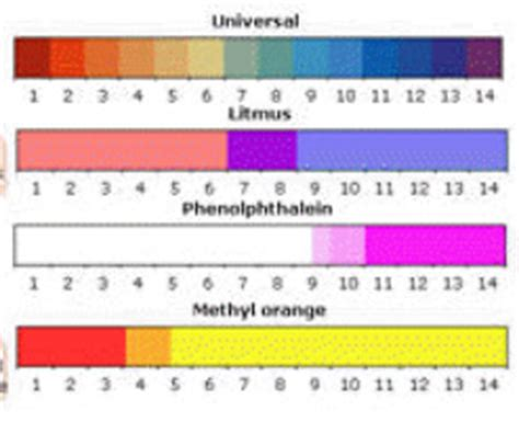 phenolphthalein color phenolphthalein indicator color chart pictures to pin on