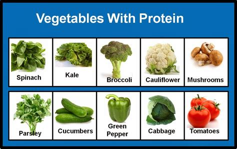 vegetables with protein a journey to embrace vegetable 101 for paleo