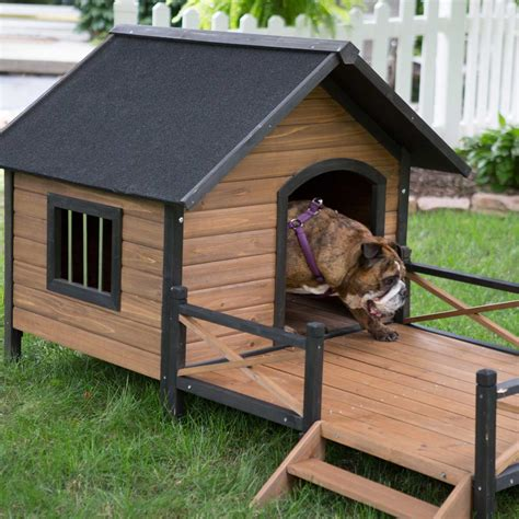 dog in house your big friend needs a large dog house mybktouch com