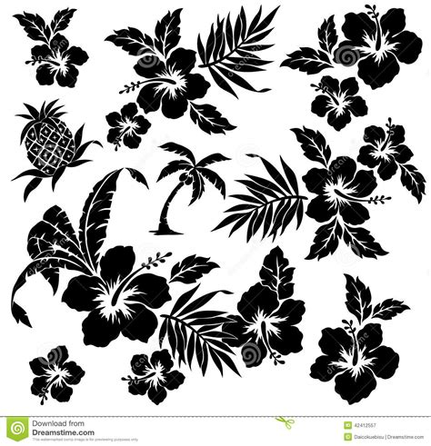 tropical plant and flower stock vector image of