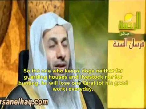 islam and dogs no pet dogs in islam or wont visit you and you will suffer in the after