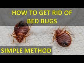 how to get rid of bed bugs at home how to get rid of bed bugs with out salt permanently fast