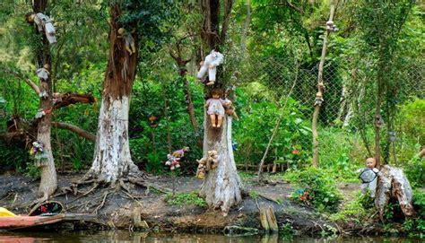 bosque aokigahara el bosque de los suicidios malditos aokigahara 191 visitar 237 as el quot bosque de los suicidios quot fotos noticia de viajes viajes