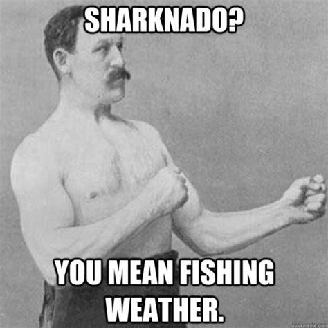 Sharknado Meme - the gallery for gt sharknado meme generator