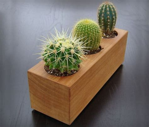 wood succulent planter products i love pinterest