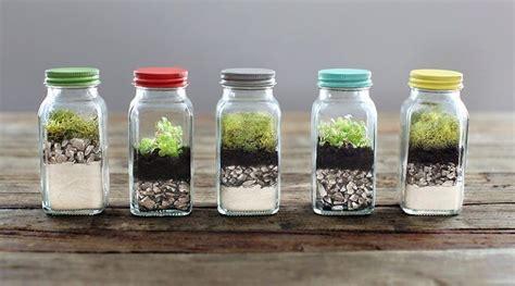 tu casa en rota decoraci 243 n con plantas de interior 10 ideas para tu casa
