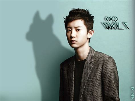 wallpaper chanyeol exo k park chanyeol exo wallpaper wallpaper wide hd