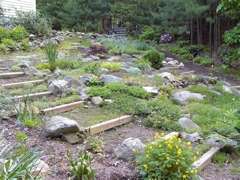 Information About Rock Garden Rock Landscaping Ideas For Stunning Outdoor Areas Landscape Design