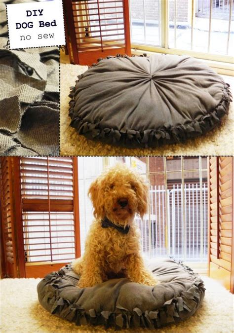no sew dog bed no sew dog bed the diy adventures