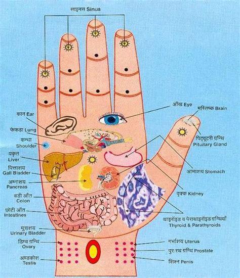 pressure point diagram grandmaster jimmy r jagtiani acupressure martial