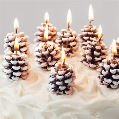 frosted pinecone candles olive cocoa