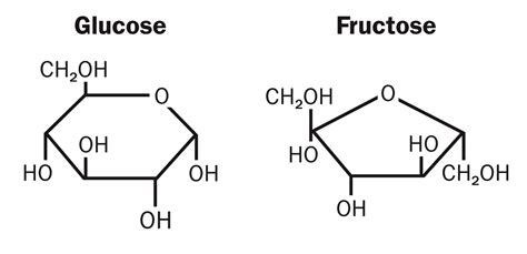 Colla Vs Glycogen glucose vs fructose joel berger ms dc dabcn qme