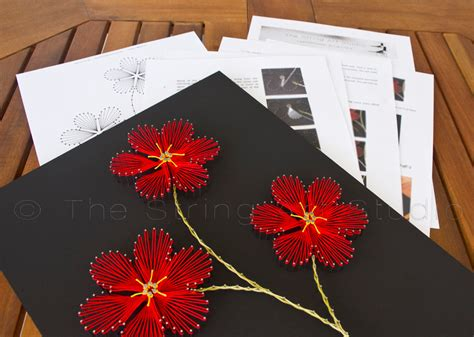 String Templates And Directions - string pattern plumeria by