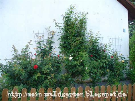 wie finde ich ein haus mein waldgarten am gartenzaun wie gestalte ich meinen