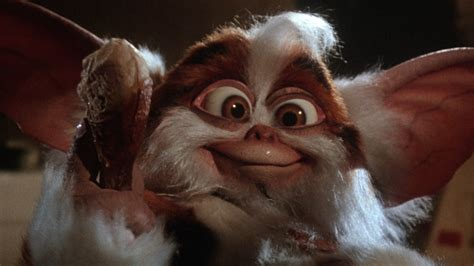 the world s best photos of gremlins and what was the the best part of gremlins 2 the nostalgia
