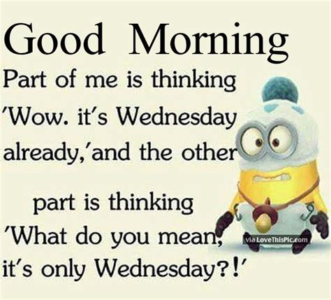 good morning funny minion wednesday quote pictures photos