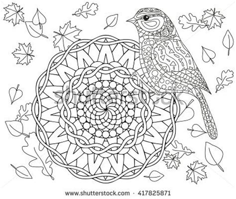 bird mandala coloring pages stock images royalty free images vectors