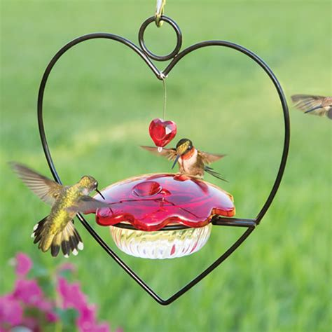7 Pretty Bird Feeders by Duncraft Hummingbird Feeder