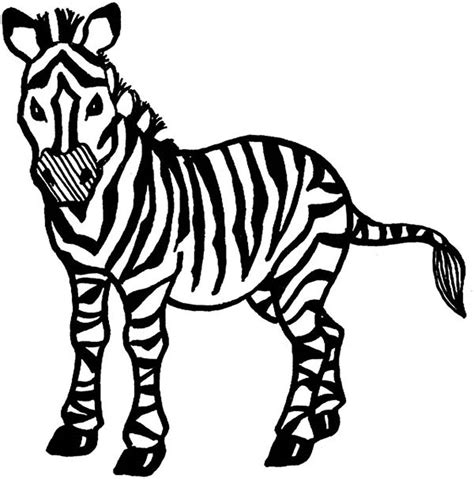 printable coloring page of a zebra free coloring pages of zebras
