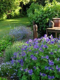 Winterharte Pflanzen Für Terrasse 843 by 113 Besten The Of Gardening Bilder Auf