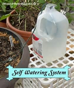 Self Watering 25 Best Ideas About Self Watering Pots On Pinterest