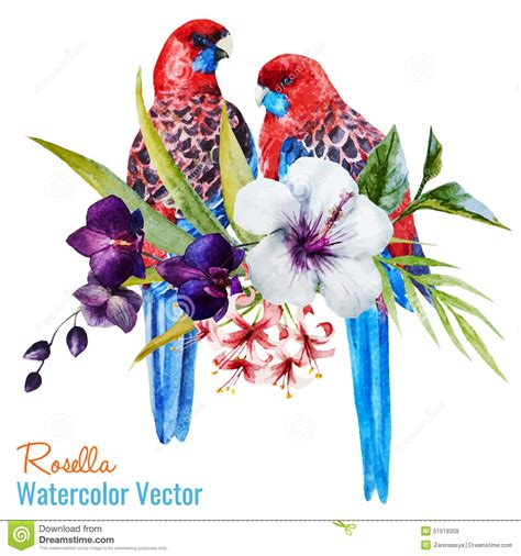 Asos10524 Floral Bird Tropical Blue White S M Import Chiffon Dress birds stock vector image 51519308