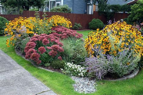 amazing rain garden design ideas hgtv