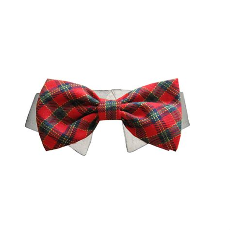 puppy bow tie collar shirt collar ties shirt collars bow ties breeds picture