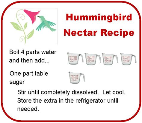 formula for hummingbird feeders home improvement
